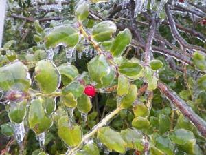 Dec 8 2013 Ice 2