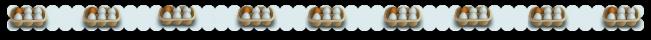 eggsincartons4_zps916cc056