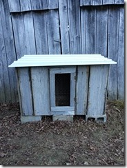 completed rooster house